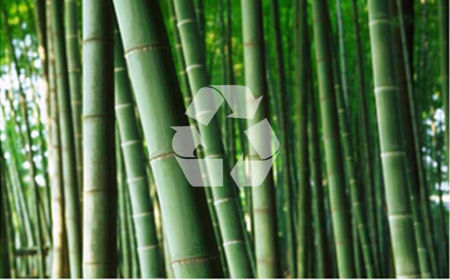 Bilde for kategori Bambus sokker