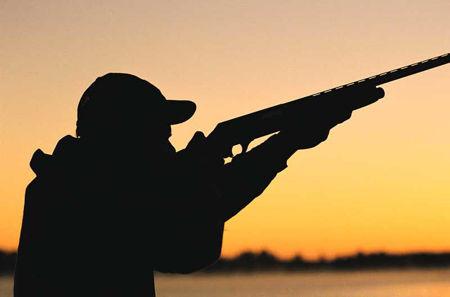 Bilde for kategori Jaktsokker